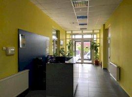Spatiu comercial ideal showroom sau pentru birou zona Centrala