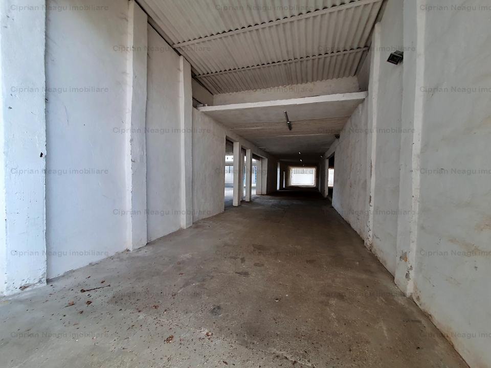 Hala cu Pod rulant, De Inchiriat, zona Depozitelor Pitesti
