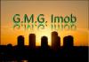 Madalina -GMG IMOB - Agent imobiliar