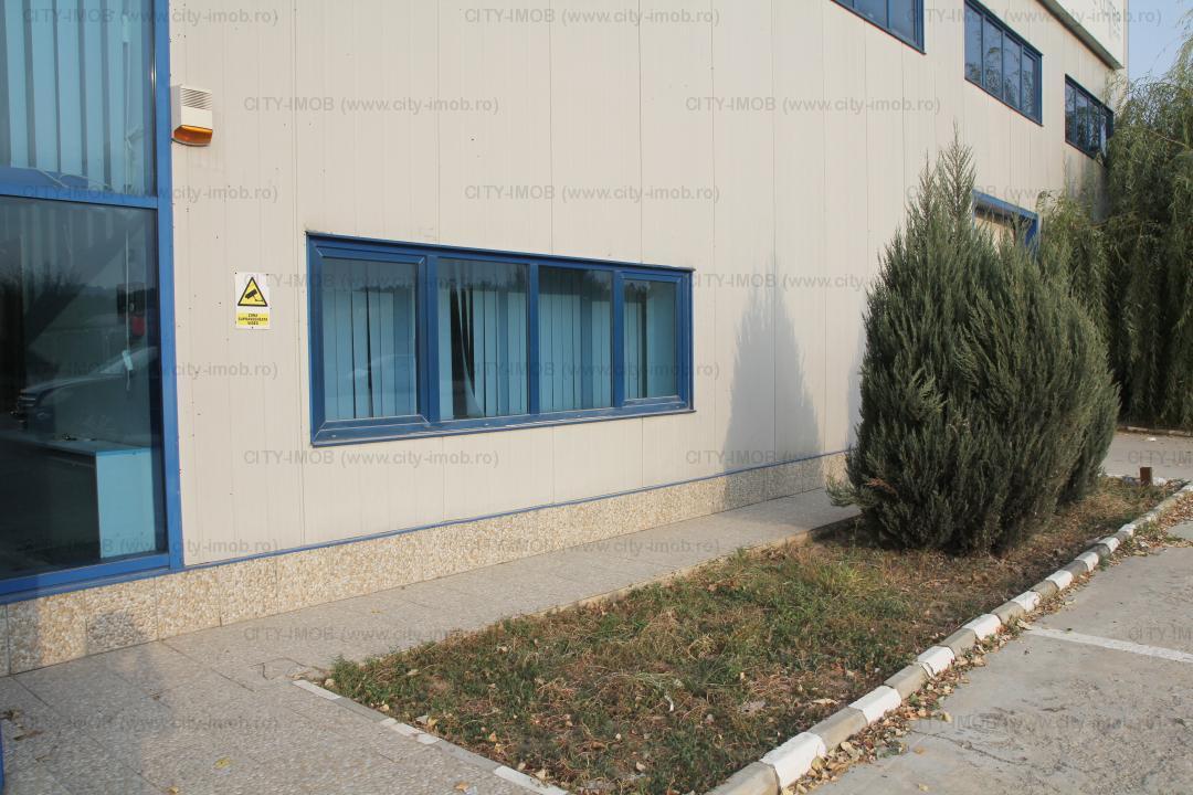 Depozit, Birouri Administrative, Hala productie  Warehouse, Administrative Offices, Production Hall