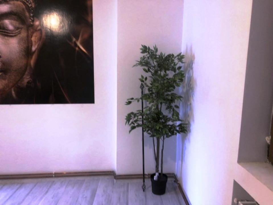 Spatiu de birouri 100 mp n Ploiesti, zona Ultracentrala.