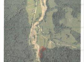 Teren de vanzare (licitatie) 2378 mp Marginea, judet Suceava