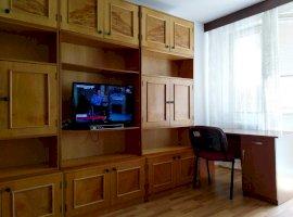 Apartament cu 1 cameră în zona Take Ionescu