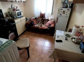 Apartament 1 camera in zona Buziasului