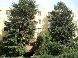 Vanzare apartament 3 camere Theodor Pallady, Bucuresti